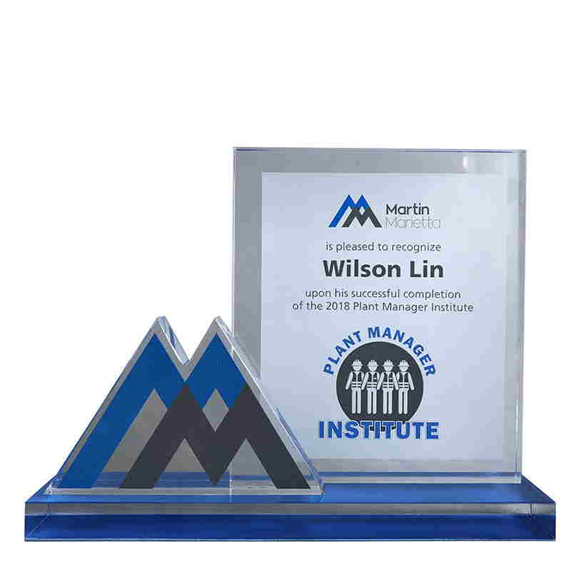 Logo-Themed Crystal Training Award